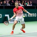 Den Borna Coric ATP-världen turnerar inomhus tennis Fotografering för Bildbyråer