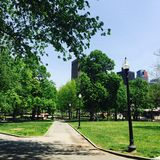 Den Boston allmänningen parkerar Arkivfoton