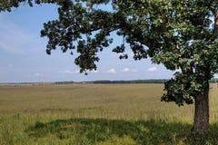 Den bra jorddelstatsparken är en stads- delstatspark på kanten av Sioux Falls, South Dakota tunnelbanaområde arkivbilder