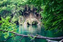 Den branta banken av sjön ser som hundkapplöpningframsida Kroatiska nationalparkPlitvice sjöar Royaltyfri Fotografi
