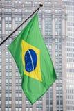 Den brasilianska flaggan i New York parkerar avenyn Arkivfoto