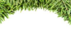 Den breda julgränsgirlanden ordnade med nya granfilialer som isolerades på vit i bågeform arkivfoton