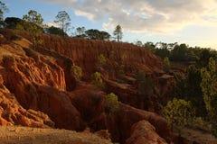 Den breda sikten av klipporna, med sörjer träd och himmel (II) Fotografering för Bildbyråer