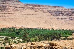 Den breda sikten av kultiverade fält och gömma i handflatan i Errachidia Marocko N royaltyfri foto