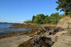Den briljanta stranden med vaggar bestrött omkring i Maine Royaltyfri Fotografi