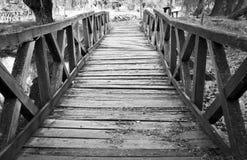 Den broken träbron i natur Royaltyfria Foton