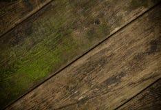 Den bruna gamla wood texturen med fnuren Royaltyfria Bilder