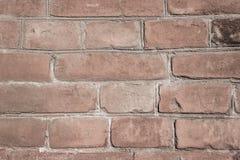 Den bruna tegelstenväggen texturerar royaltyfri bild