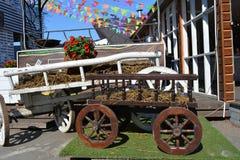 Den bruna vagnen Fotografering för Bildbyråer