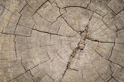 Den bruna wood plankan med gnarl Royaltyfria Foton