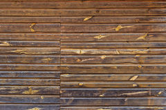 Den bruna wood texturen Royaltyfria Foton