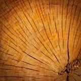 Den bruna wood texturen, bakgrund Royaltyfri Bild