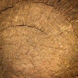 Den bruna wood texturen, bakgrund Royaltyfria Bilder