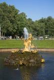 Den Brunnen Samson abstellen, der den Mund des Löwes zerreißt Peterhof Stockfotos