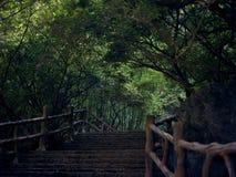 Den brutna bron leder till byn på andra sidan av floden Arkivfoto