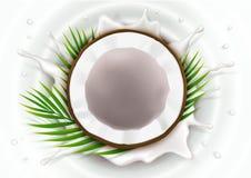Den brutna kokosnöten mjölkar in färgstänk royaltyfria bilder