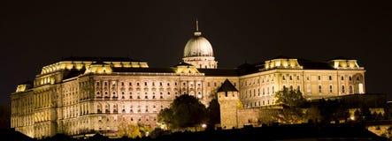 Den Buda slotten i natten Royaltyfria Foton
