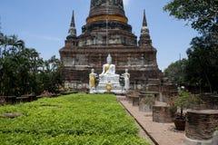 Den Buddha statusen Arkivfoto