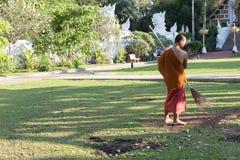 den buddistiska munken som arbetar med kvasten, sopar gräsmatta från stupade sidor Royaltyfri Fotografi