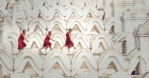 Den buddistiska novisen går i tempel royaltyfri bild