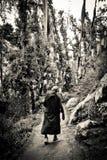 Den buddistiska nunnan på Kora går, McLeod Ganj, Indien Arkivbilder