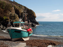 Cadgwith Cove Cornwall Royaltyfri Foto