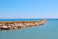 Den Camargue deltan, Frankrike Arkivbilder