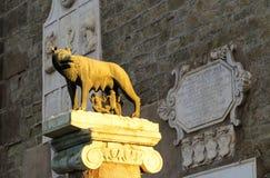 Den Capitoline Hon-vargen - Lupa Capitolina, Rome, Italien Arkivbilder