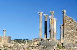 Den Capitoline templet i romare fördärvar, den forntida romerska staden av Volubilis morocco Royaltyfri Bild