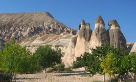 Den Cappadocia fen Chimneysvaggar formationnärliggande Goreme i Turkiet Arkivfoto