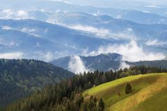 Den Carpathian höglandet betar Arkivfoto