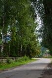 Den Carpathians byn Royaltyfria Foton