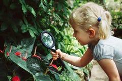 Den Caucasian flickan som ser växter, blommar anthuriumen till och med förstoringsglaset arkivbilder