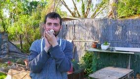 Den Caucasian manhållen behandla som ett barn fågelungen, kyssande innehavhöna lager videofilmer