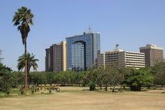 den centrala staden parkerar med palmträd och sikt för affärsmitt royaltyfri fotografi