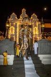 Den ceremoniella Tuskeren går ut tempelpofen den sakrala tandreliken i Kandy i Sri Lanka under Esalaen Perahera Arkivbild
