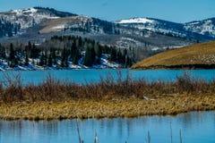 Den Chain sjön, provinsiella Chain sjöar parkerar, Alberta, Kanada Arkivfoton