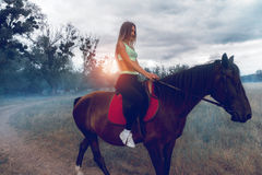 Den charmiga damen med att massera sprutar ut i sportswear på en häst Arkivbild