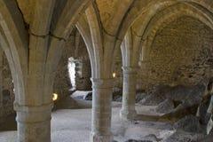 den chillongeneva för 200 slott laken kan montreux nära switzerland Arkivbilder