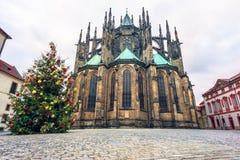 Den Christmass treen och domkyrkan för St. Vitus i Prague rockerar Royaltyfri Foto