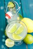 den citrusa drinken bär fruktt slappt arkivbild