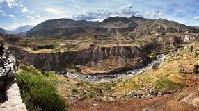 Den Colca kanjonen i Peru - sikt av den terrasserade fält och Colca floden Royaltyfria Bilder