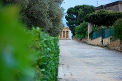 Den Concordia templet i det arkeologiskt parkerar den Valle deien Templi, Agrigento, Sicilien fotografering för bildbyråer