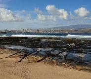 Den Confital stranden och Las Palmasstaden, Gran canaria, kanariefågelöar Arkivbild