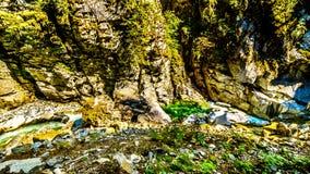 Den Coquihalla floden i den provinsiella Coquihalla kanjonen parkerar och på Othello Tunnels nära hopp i British Columbia Kanada fotografering för bildbyråer