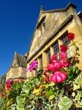 Den Cotswolds England Broadway byn blommar och stugan för den murgrönaCotswold stenen fotografering för bildbyråer