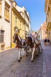 Den Cracow (Krakow) - Polen hästvagnen turnerar Fotografering för Bildbyråer