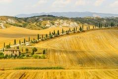 Den Crete senesien, kännetecken landskap i den Val d'Orciaen arkivfoton