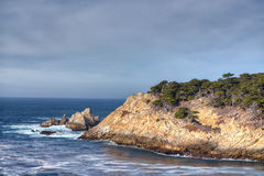 Den Cypern lilla viken på punkt Lobos parkerar Royaltyfria Foton