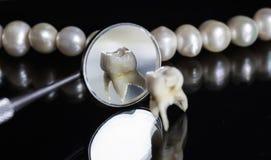Den dåliga ruttna tanden drog och ställningar mitt emot kontoren av Royaltyfri Bild
